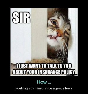 Need an insurance agent in the digital world