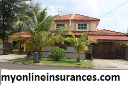 Claim insurance damage on fallen tree and branches